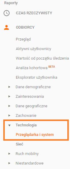 raport z typem przeglądarek użytkowników google analytics